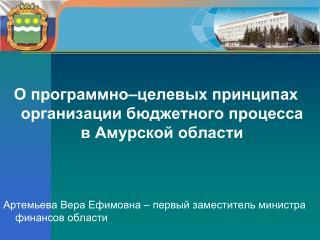 О программно–целевых принципах организации бюджетного процесса в Амурской области