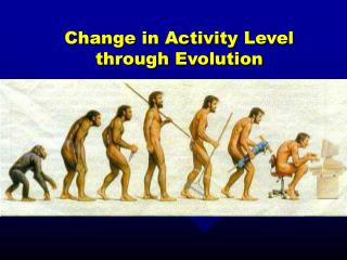 Change in Activity Level through Evolution
