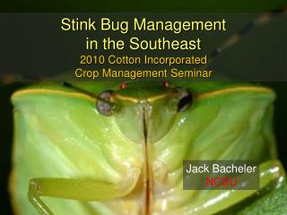 Stink Bug Management  in the Southeast 2010 Cotton Incorporated  Crop Management Seminar