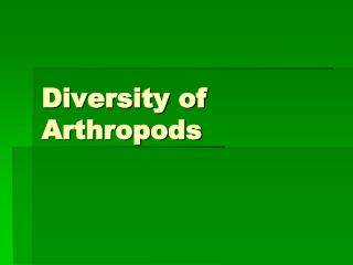 Diversity of Arthropods