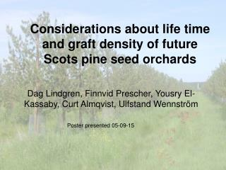 Considerations about life time and graft density of future Scots pine seed orchards