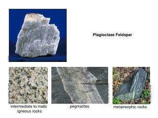 intermediate to mafic  igneous rocks