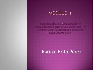 Karina  Brito Pérez