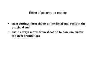 Effect of polarity on rooting