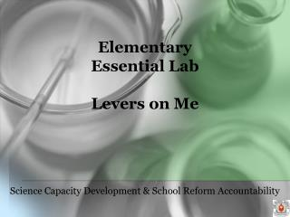 Elementary Essential Lab  Levers on Me
