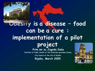 Obesity is a disease  –  food can be a cure : implementation of a pilot project