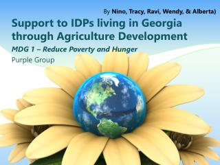 Support to IDPs living in Georgia through Agriculture Development