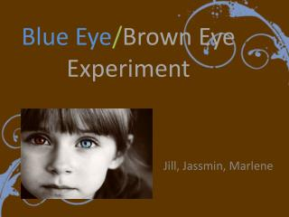 Blue Eye / Brown Eye Experiment