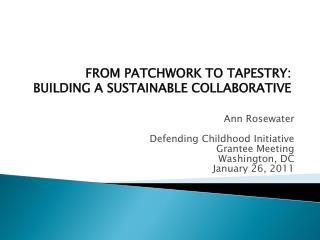 Ann Rosewater Defending Childhood Initiative  Grantee Meeting Washington, DC  January 26, 2011