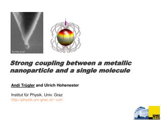 Strong coupling between a metallic nanoparticle and a single molecule