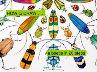 HOW to DRAW…..
