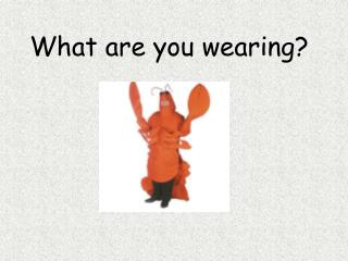 What are you wearing?
