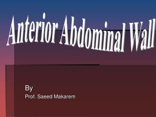 By Prof. Saeed Makarem
