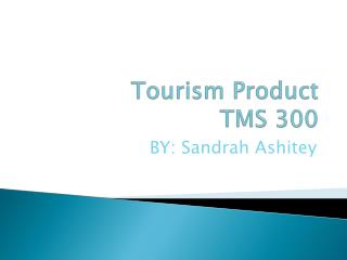 Tourism Product TMS 300