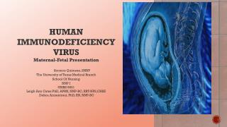 HUMAN IMMUNODEFICIENCY VIRUS  Maternal-Fetal Presentation