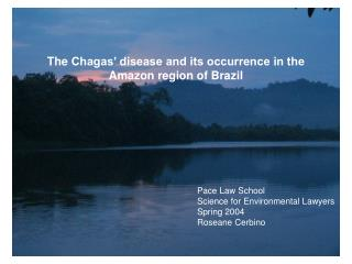 The Chagas' disease and its occurrence in the Amazon region of Brazil