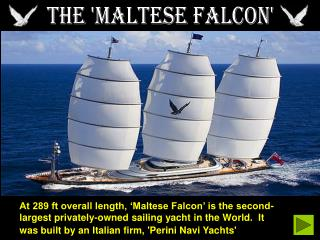 THE 'MALTESE FALCON'