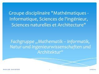 """Fachgruppe """"Mathematik – Informatik,  Natur-und Ingenieurwissenschaften und Architektur"""""""