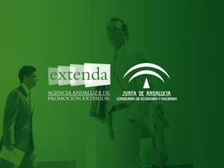 EXTENDA:  SERVICIOS  PARA LA INTERNACIONALIZACI�N DE LA EMPRESA ANDALUZA