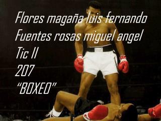 """Flores magaña  luis fernando Fuentes rosas miguel  angel Tic II 207 """"BOXEO"""""""