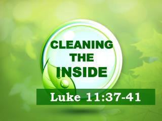 CLEANING  THE  INSIDE