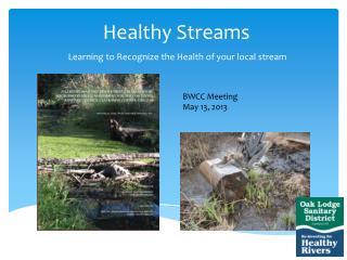 Healthy Streams
