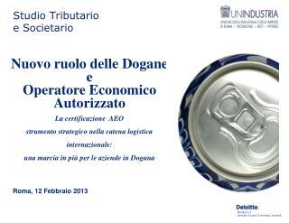 Roma, 12  Febbraio  2013