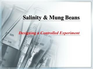 Salinity &  Mung  Beans