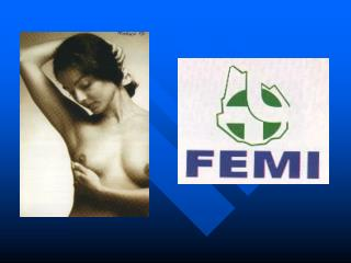 PROGRAMA FEMI-APS
