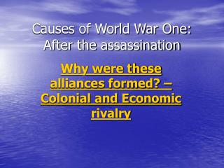 Causes of World War One: After the assassination