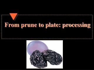 From prune to plate: processing