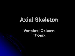 Axial Skeleton Vertebral Column Thorax