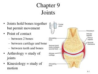 Chapter 9 Joints