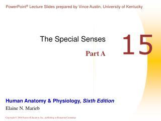 The Special Senses Part A