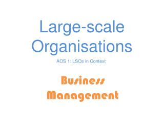 Large- scale Organisations