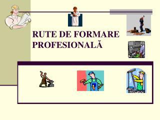 RUTE DE FORMARE PROFESIONAL Ă
