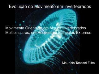 Evolução do Movimento em Invertebrados