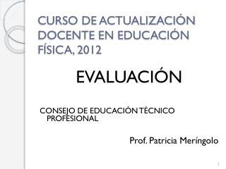 CURSO DE ACTUALIZACIÓN DOCENTE EN EDUCACIÓN FÍSICA, 2012