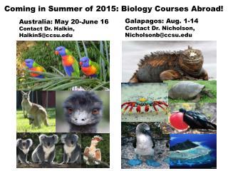 Galapagos: Aug. 1-14 Contact Dr. Nicholson,  Nicholsonb@ccsu