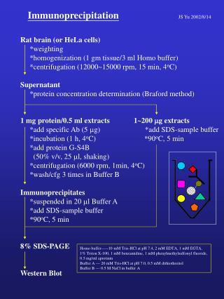 Immunoprecipitation JS Yu 2002/8/14