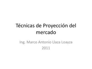 T�cnicas de Proyecci�n del mercado