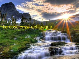 Rino d'Agostino