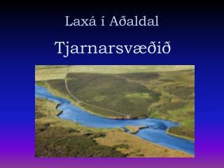 Laxá í Aðaldal