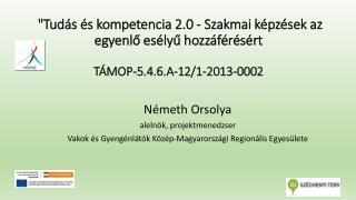 Németh  Orsolya alelnök, projektmenedzser
