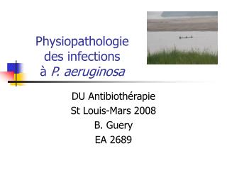 Physiopathologie  des infections  à  P. aeruginosa