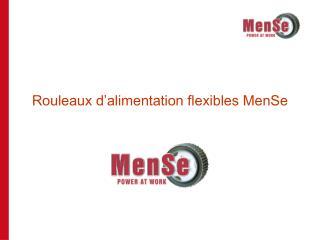 Rouleaux d'alimentation flexibles MenSe