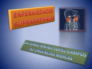 ENFERMEDADES  SUPRARRENALES
