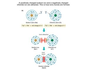 moleculesBI112
