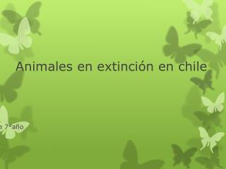Animales en extinción en chile