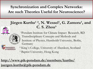 Synchronization and Complex Networks:  Are such Theories Useful for Neuroscience?